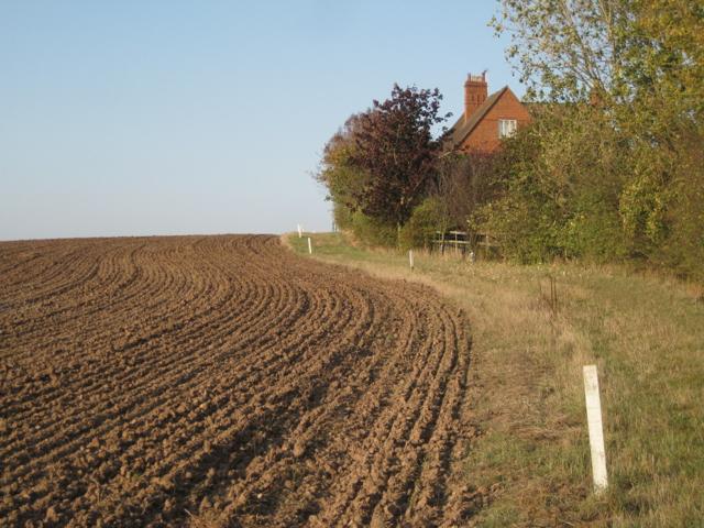 Field edge and footpath, Upper Wawensmoor