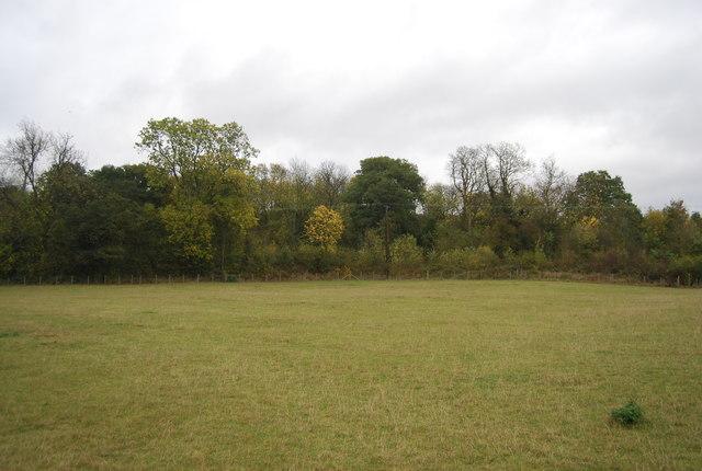Northward Hill Reserve