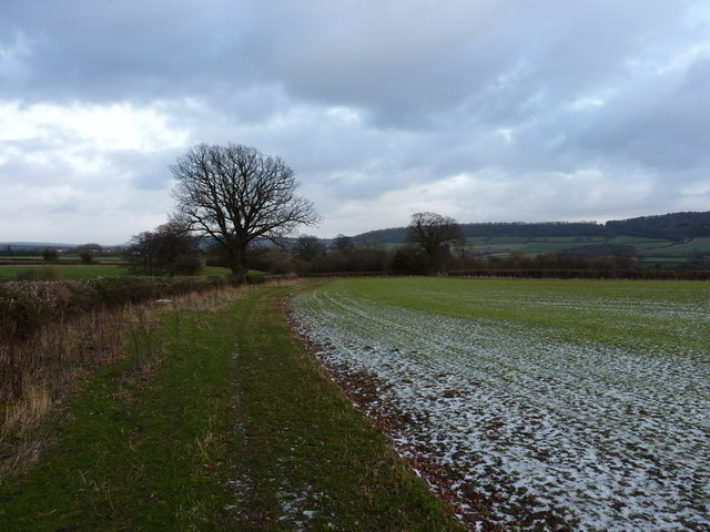 A field-edge footpath near Harley