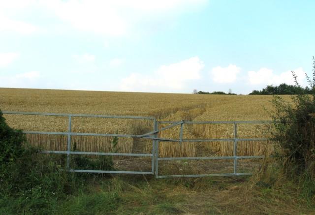 Near Channocks Farm