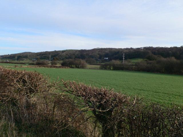 Countryside near Gloddaeth Road