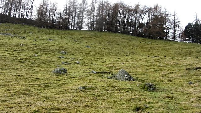 Last field, Hundleshope