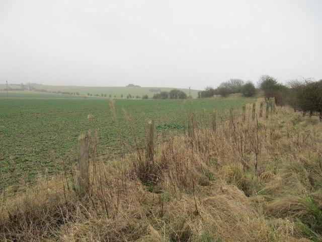Fence at Churn halt