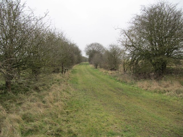 Rail bed to Compton