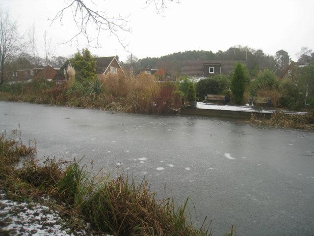 Basingstoke Canal / Warren Close
