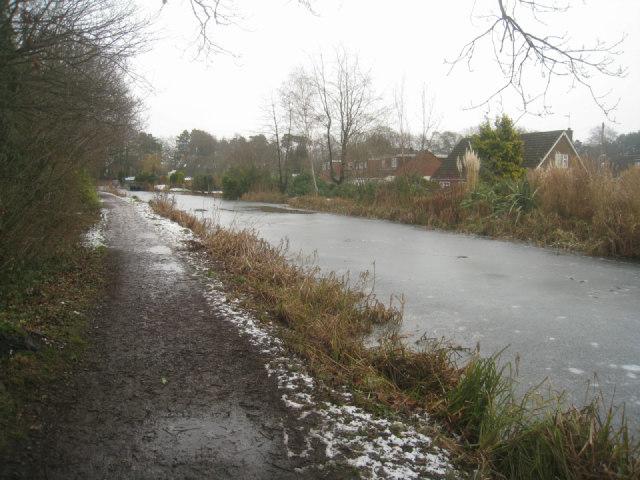 Basingstoke Canal by Warren Close