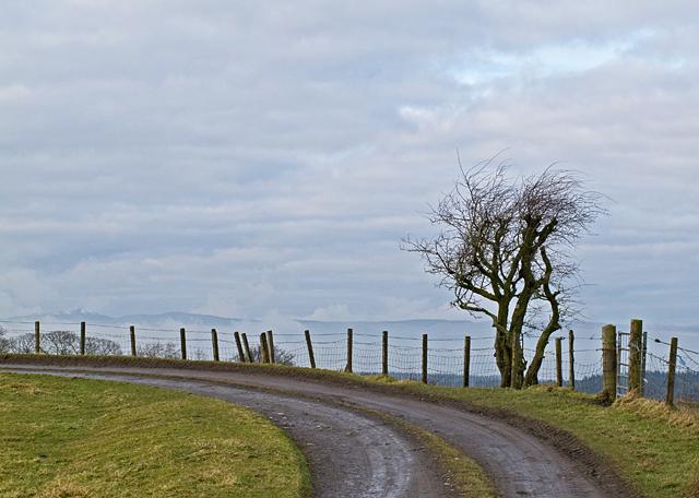 Track to Greencraig Farm