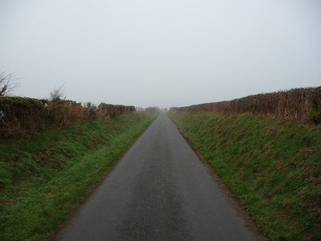 A lane high in Ceredigion in February
