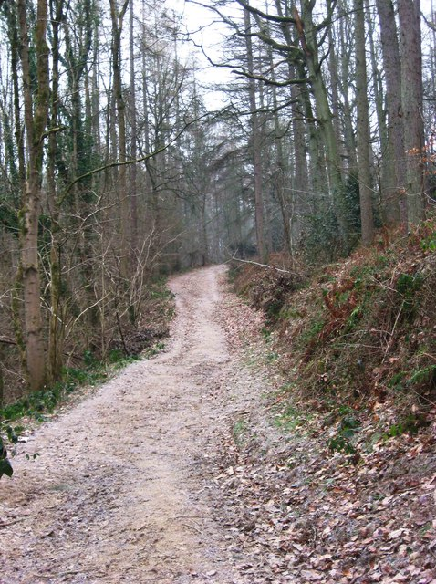 Footpath on the edge of Eymore Wood, near Trimpley