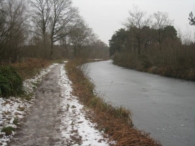 Basingstoke Canal / Forest of Eversley