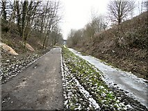 SJ9594 : TransPennine Trail by Gerald England
