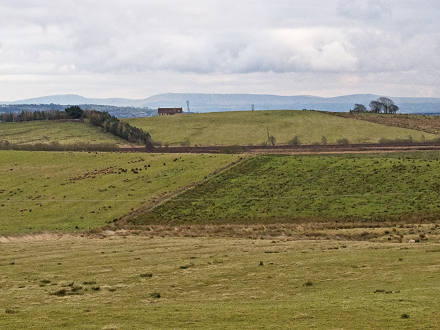 Farmland near Windyrigg