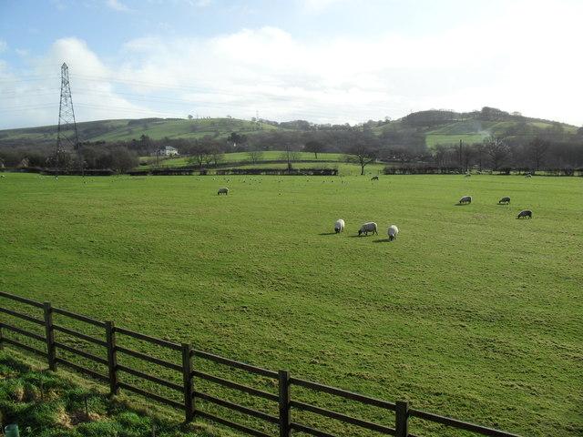 Farmland near Efail Isaf