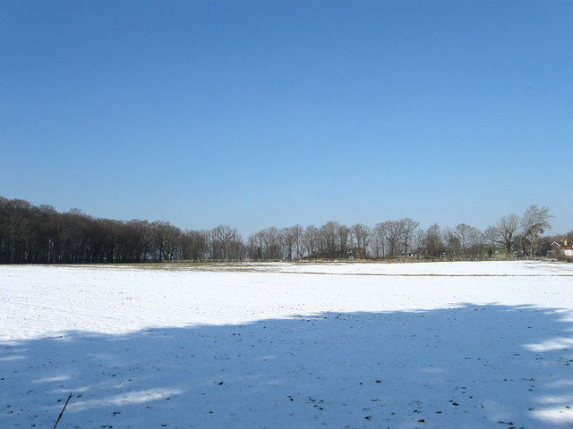 Broad Oak Field