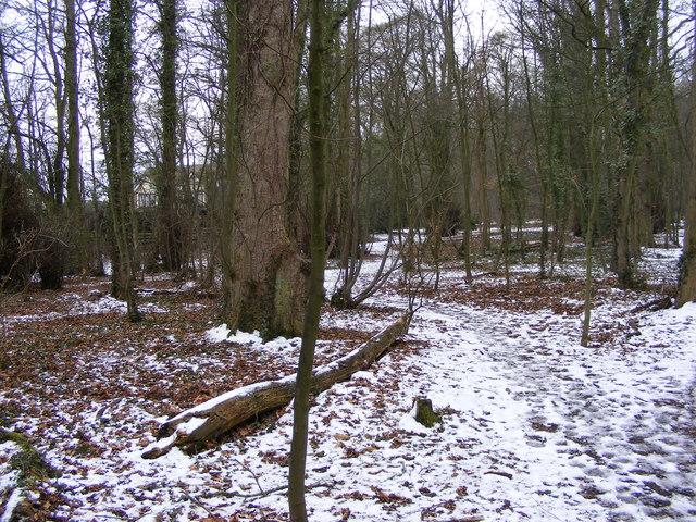 Himley Path