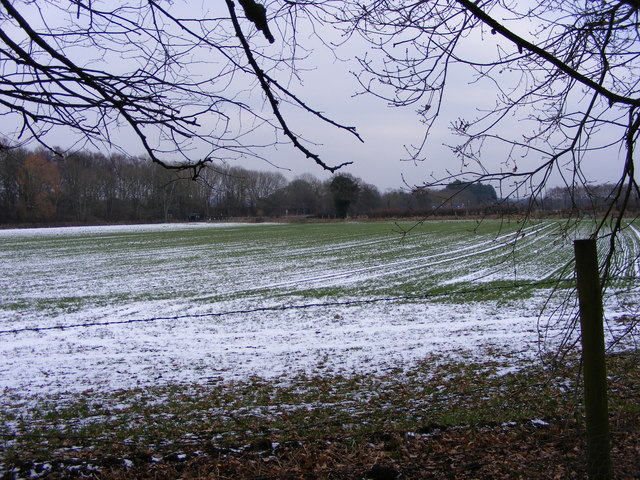 Himley Lane Field