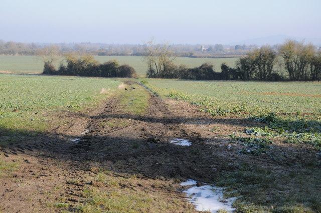 Farmland at Whitminster