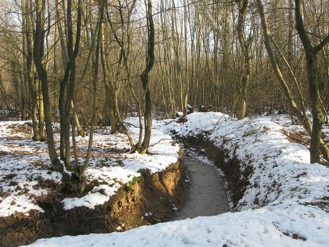 Frozen Stream, Kiln Wood