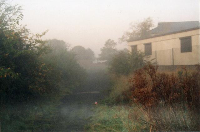 Morning Mist on the Lake 15