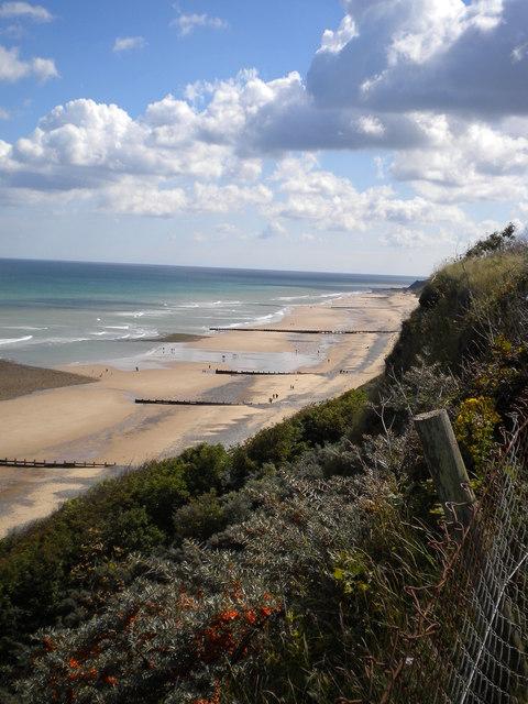 Cliff Edge and Beach