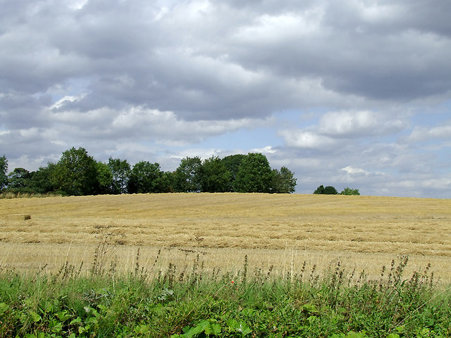 Arable field near Shebdon, Staffordshire