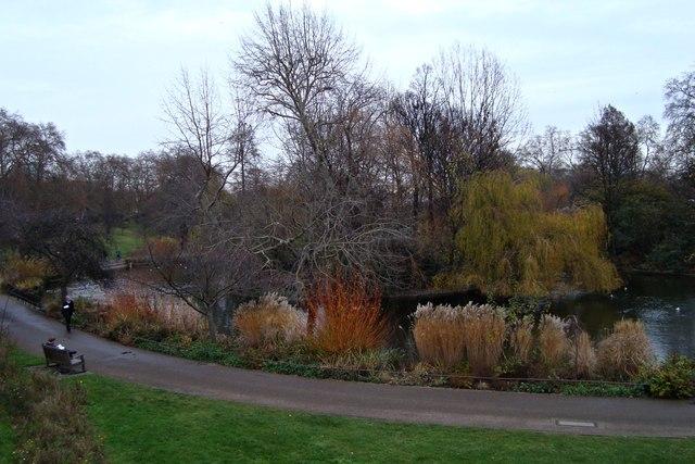 Winter in St. James's Park