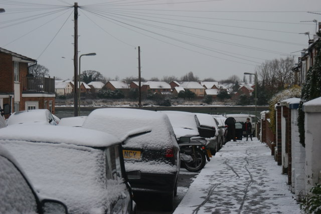 Snow 02.02.09 (3)
