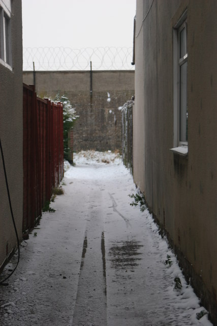 Snow 02.02.09 (4)