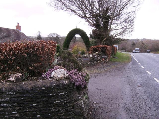 Impressive Topiary Arch