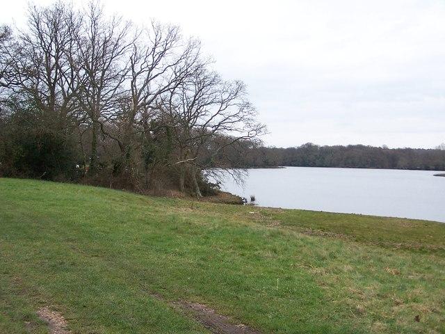Footpath beside Beaulieu River