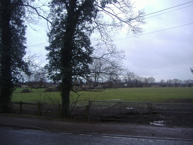 Fields by Court Lane
