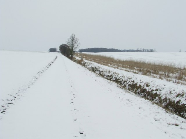 Snow Covered Footpath