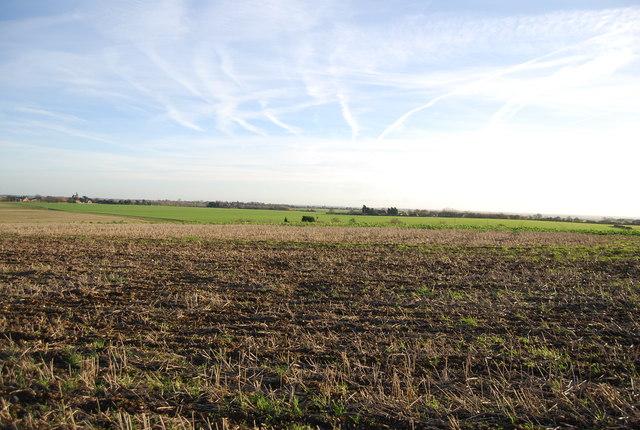 Farmland landscape