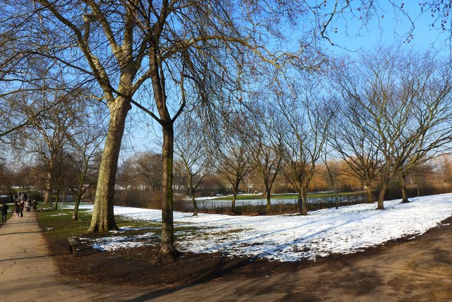 Path junction on a wintry day, Regent's Park London