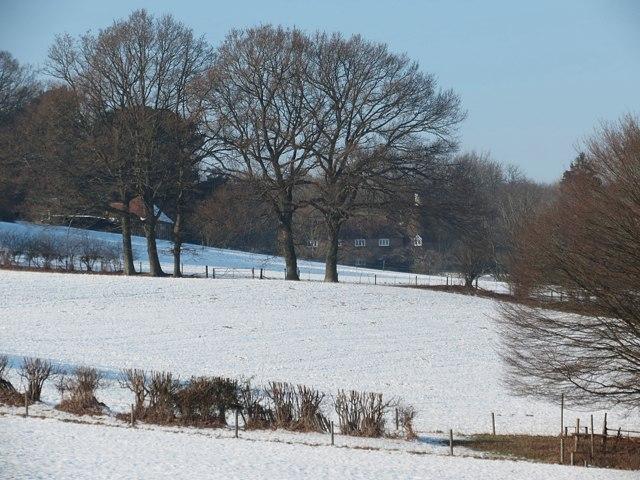 Field off Brede Lane