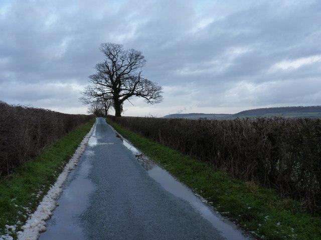 Along the lane towards Harley
