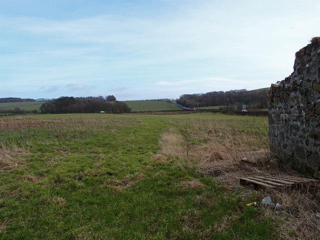 Field and ruin