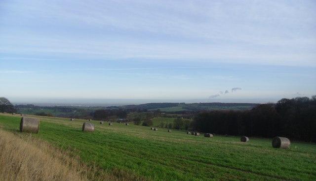 Farmland near High hoyland.