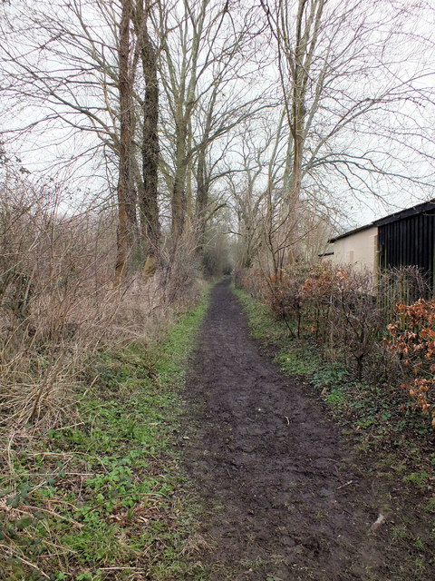 Footpath to the down