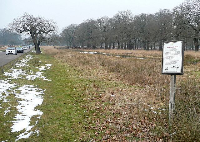 Hamcross Plantation