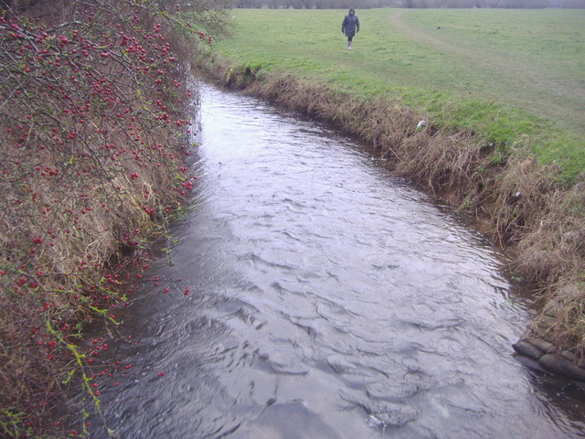 Boveney Brook, Dorney Common
