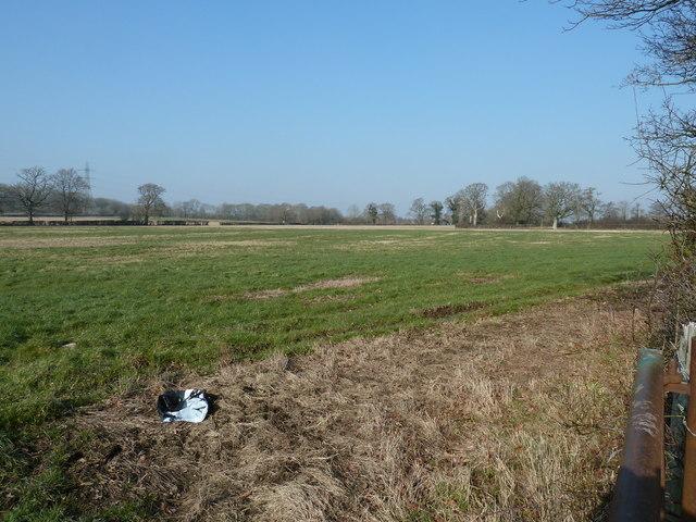 Stubble field west of Sake Ride Lane