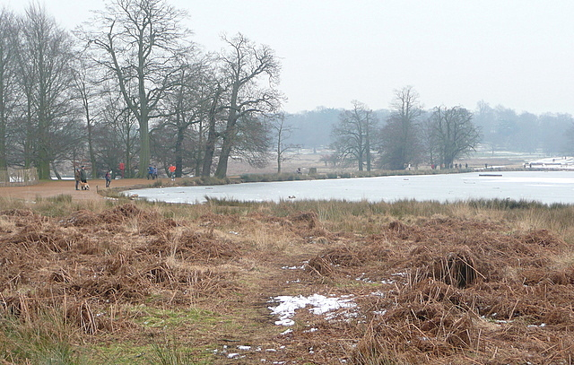 Causeway across Pen Ponds