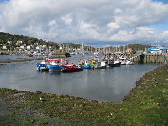 Fishing boats in Tarbert harbour