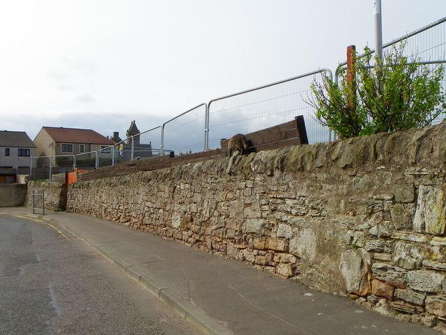Wall and fencing, Cellardyke