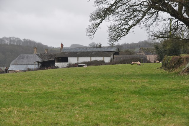 Mid Devon : Freathingcott Farm & Grassy Field