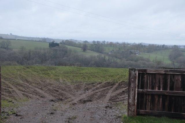 Taunton Deane : Grass Field & Countryside