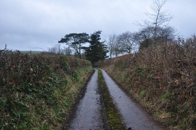 Taunton Deane : Rectory Road