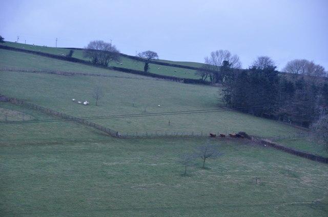 Mid Devon : Countryside Scenery