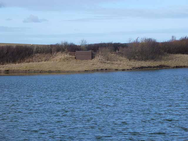 Southern end of Hauxley Nature Reserve